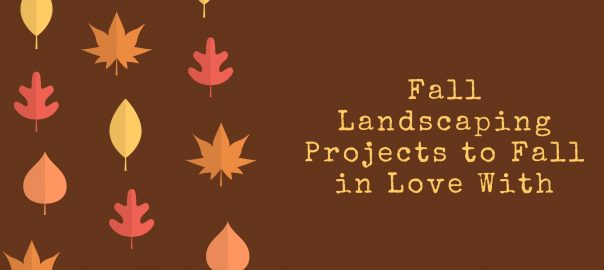 Fall Landscaping Projects