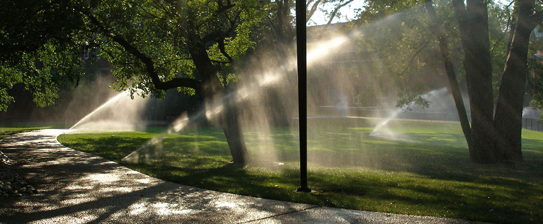 Sprinkler services in Phoenix, AZ